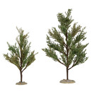 Village Accessories - Southern Oak Trees