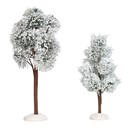 Village Accessories - Snowy Jack Pine Trees