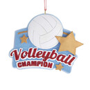 Volleyball Ornament For Personalization