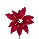 Red Poinsettia With Red And White Trim