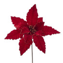 Red Velvet Poinsettia