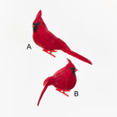Velvet Cardinal Clip On Ornaments 2 Assorted